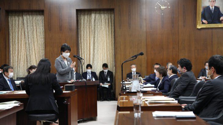 国会で決まった法解釈を政府が勝手に変えていいのか?~11月13日衆議院法務委員会(その1)