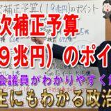 第3次補正予算の問題点~菅内閣は本気でコロナ対策をやる気があるのか?~